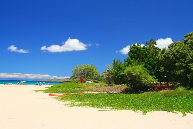 ハワイ島(ハワイ) ハワイ島(ハワイ) ハワイ最大の「ビッグ・アイランド」。活火山キラウエアとパ